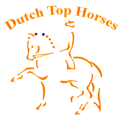 Dutch Top Horses